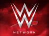 WWE Net Worth Forbes 2016-7 - Earnings, Salaries ,Revenues is $737,099 Million