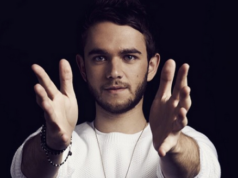Zedd Net Worth Record Producer
